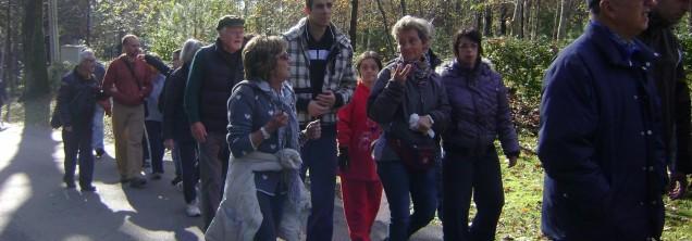 Gruppi di Cammino